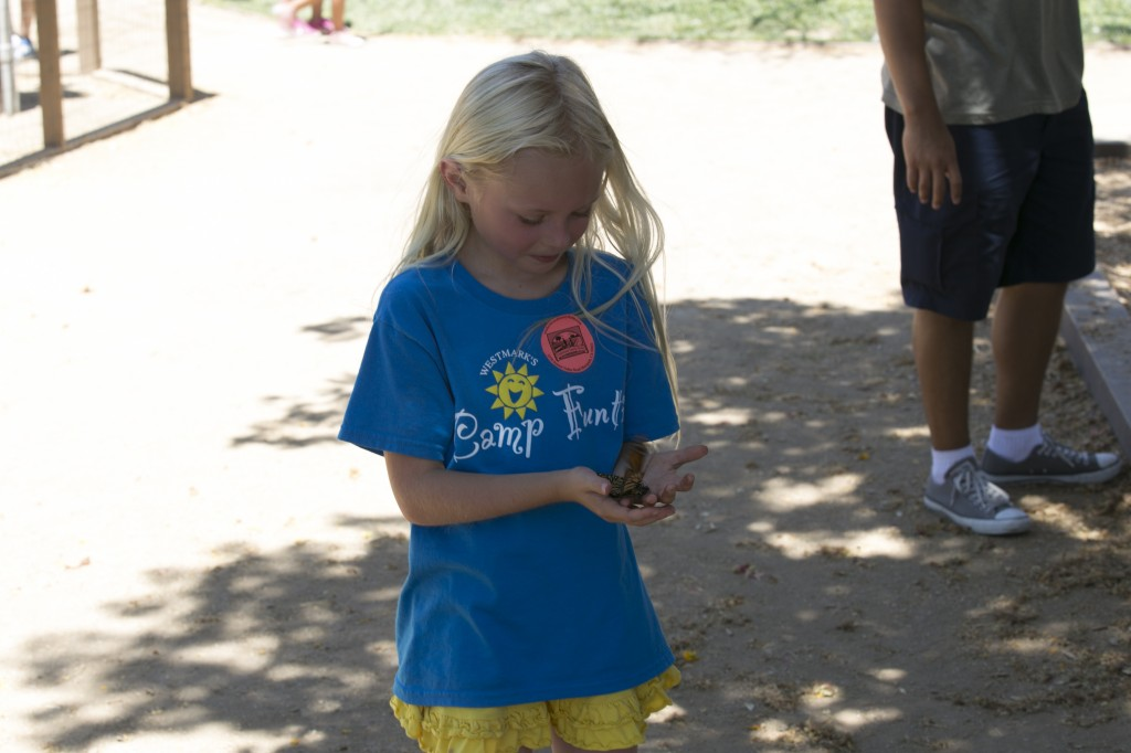 Camp Funtime 2014 JH 344 (1)